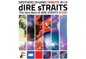 Brothers in band - Dire Straits Tribute